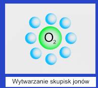 klima-dla-alergikow-jony